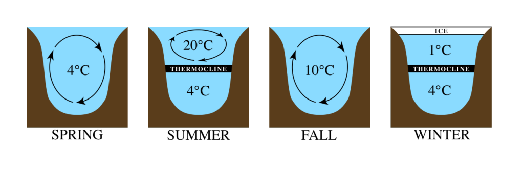 A typical pattern of seasonal mixing for lakes in temperate climates like Ontario's.