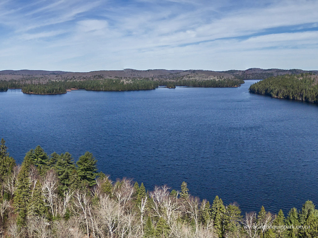 The ice-free surface of Lake Opeongo (image courtesy of The Friends of Algonquin Park)
